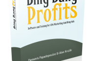 Bing Bang Profits