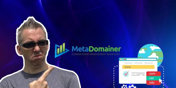 MetaDomainer Review